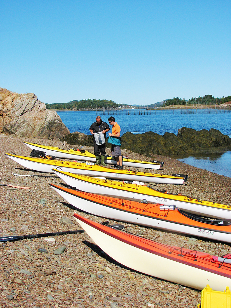 Seascape Kayak Tours Richardson Nb