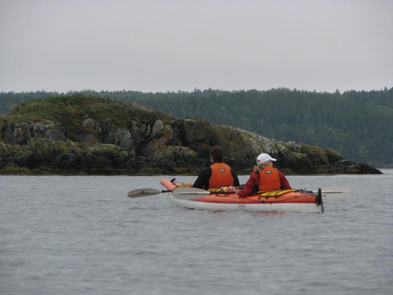 Seascape Kayak Tours Richardson Nb