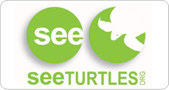 See Turtles