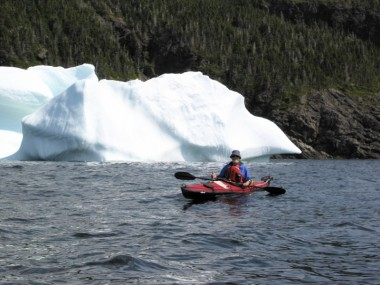 Newfoundland affords the chance to see icebergs and whales.