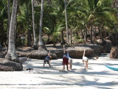 Palm practice
