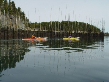 PADDLERS ENJOY CALM CONDITIONS AND EXPLORING A HERRING WEIR OFF ST. HELENA ISLAND IN THE BAY OF FUNDY EARLIER THIS WEEK.