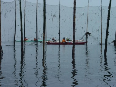 BRUCE LEADS A GROUP PAST A HERRING WEIR, A SUSTAINABLE FISHING TRADITION IN THE BAY OF FUNDY.