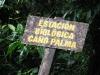 costarica_jan-april_2007-018